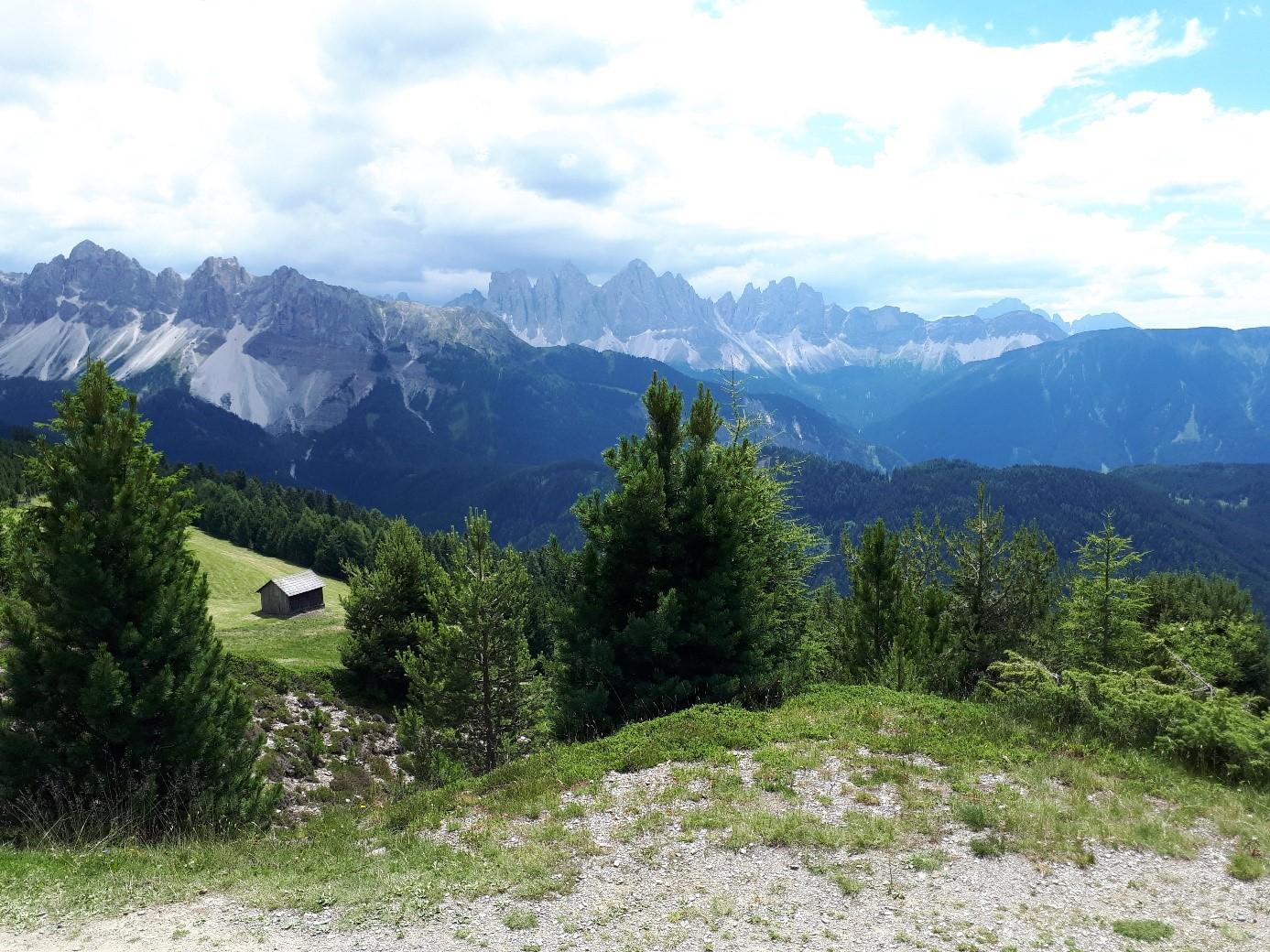 Aussicht der Südtiroler Berge während eines Wandercoachings