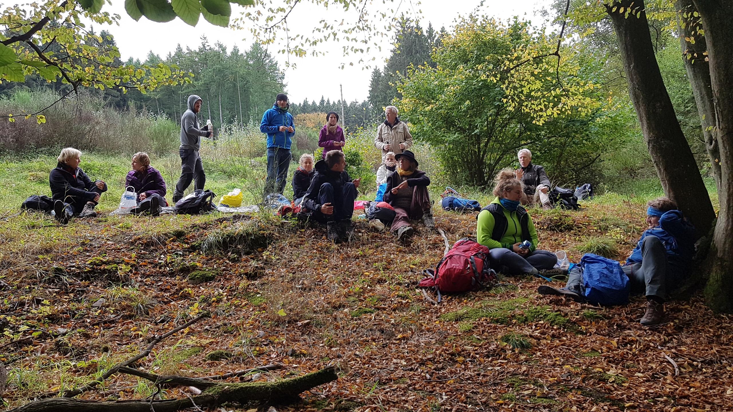 Coachinggruppe im Wald