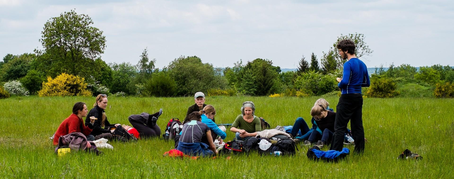 Gruppencoaching in der Natur