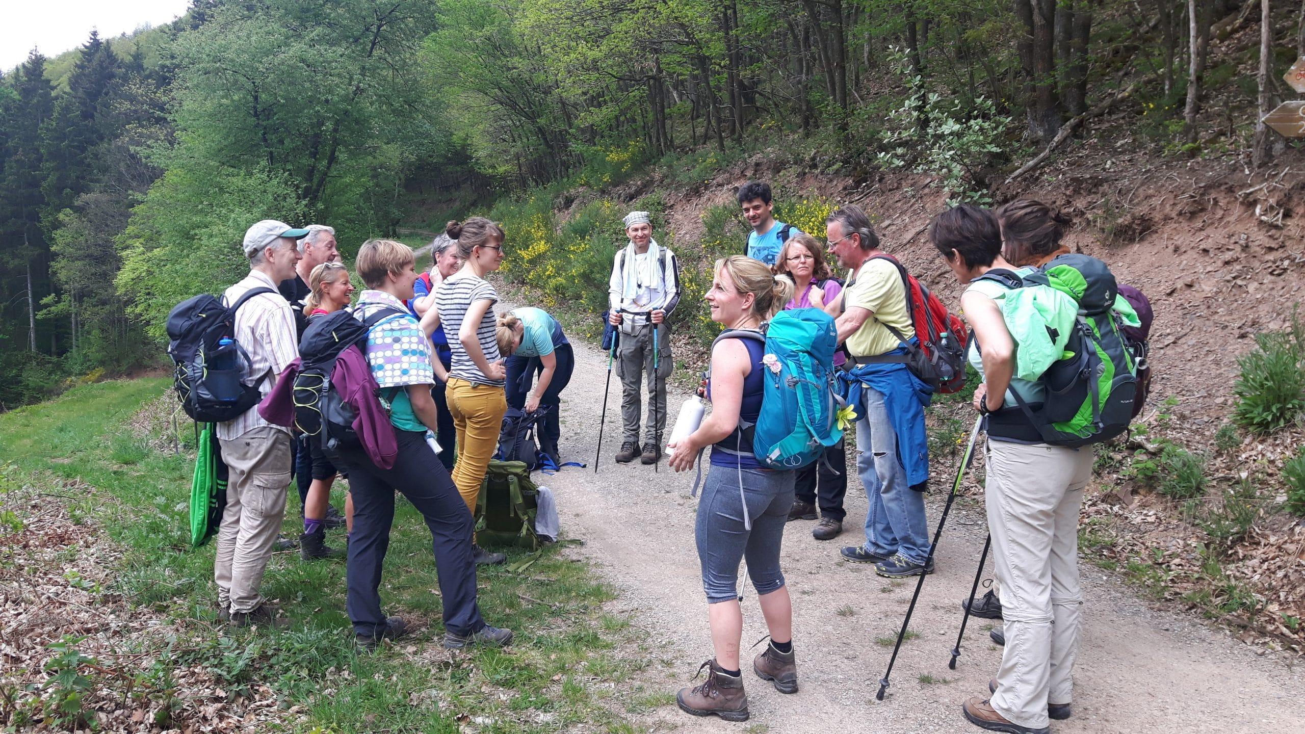 Impression der Coaching-Gruppe beim Wandern