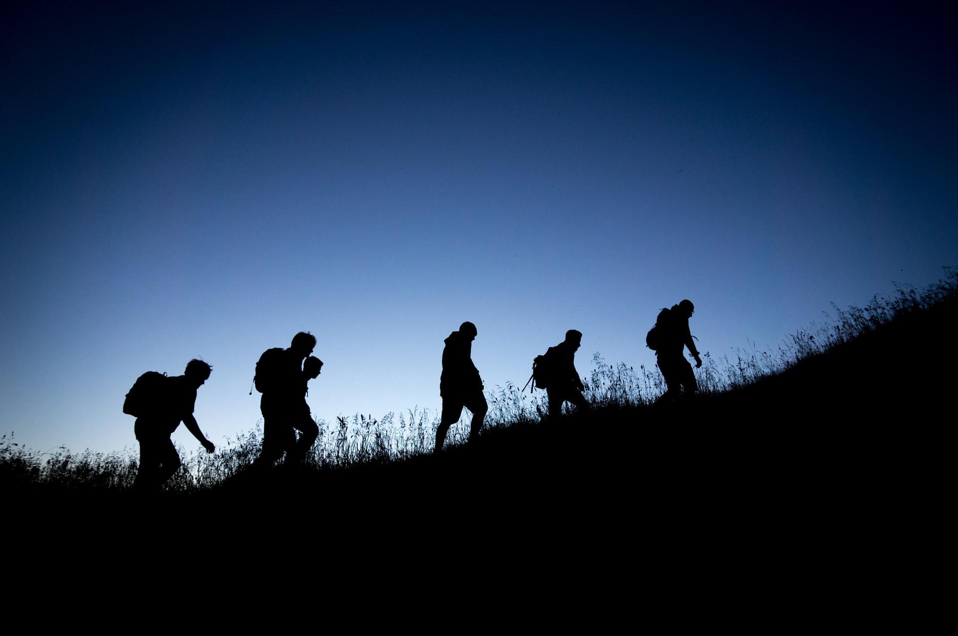 wandercoaching - coaching und natur in einem