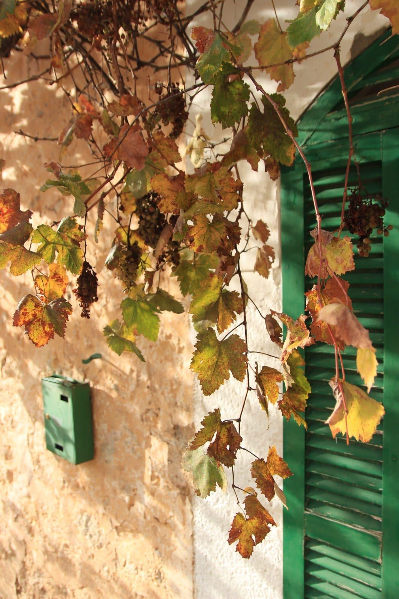 Hausfassade einer Unterkunft auf Mallorca