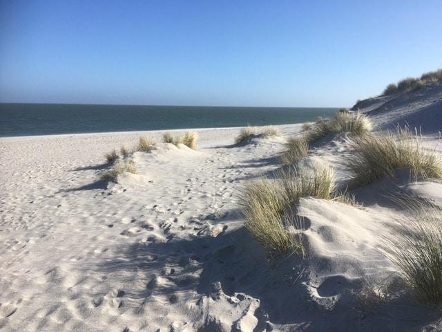 Impression einer Sanddüne auf Sylt beim Coaching