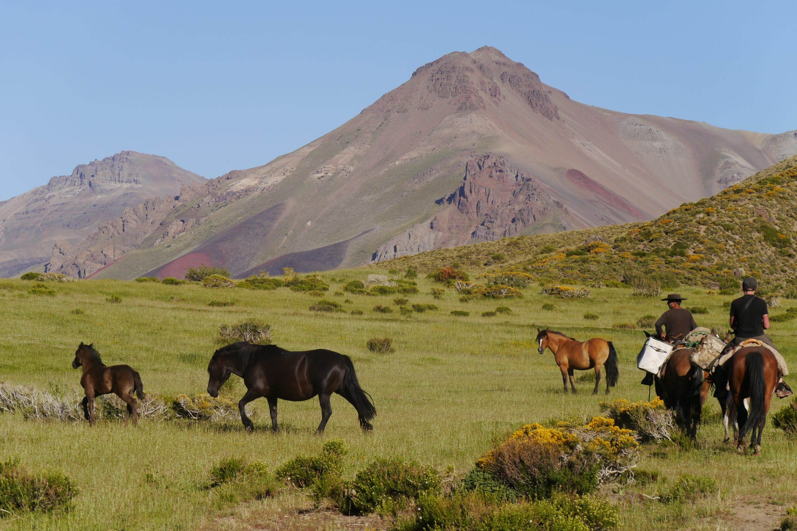 Schöne Aussicht und Ruhe in den Anden mit Pferden