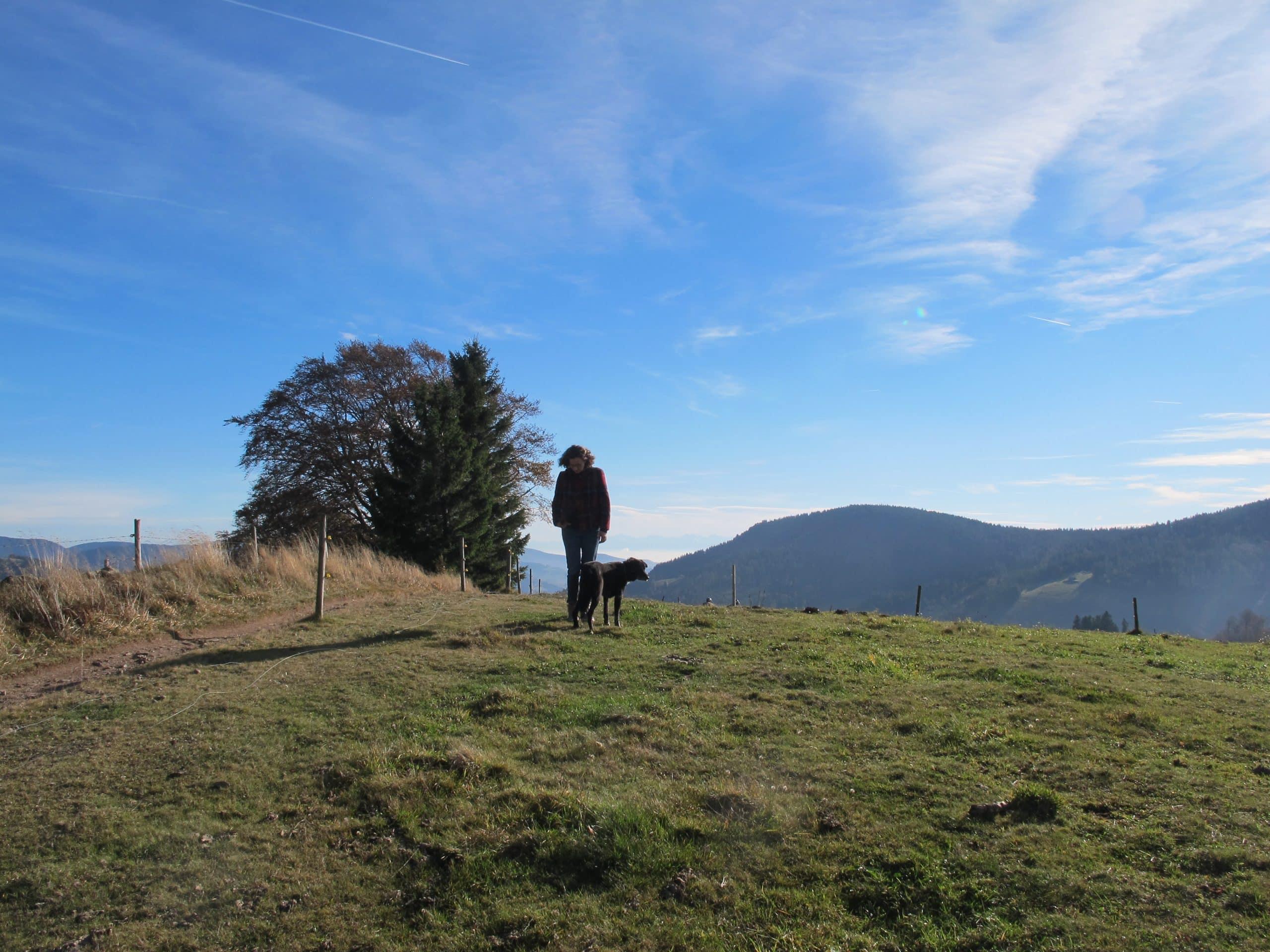 Coachee mit Hund während eines Wandercoachings