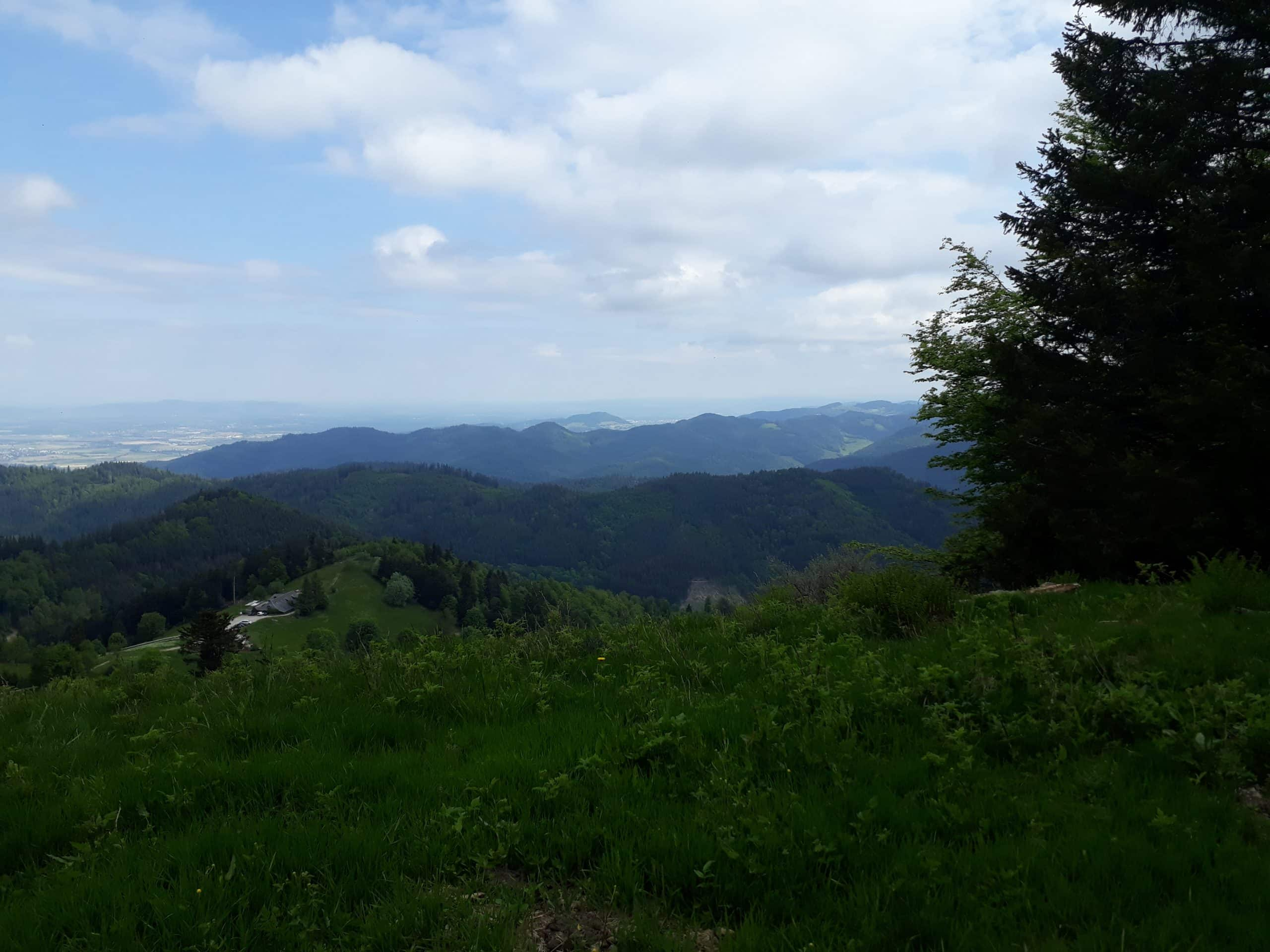 Der Schwarzwald und seine atemberaubende Landschaft