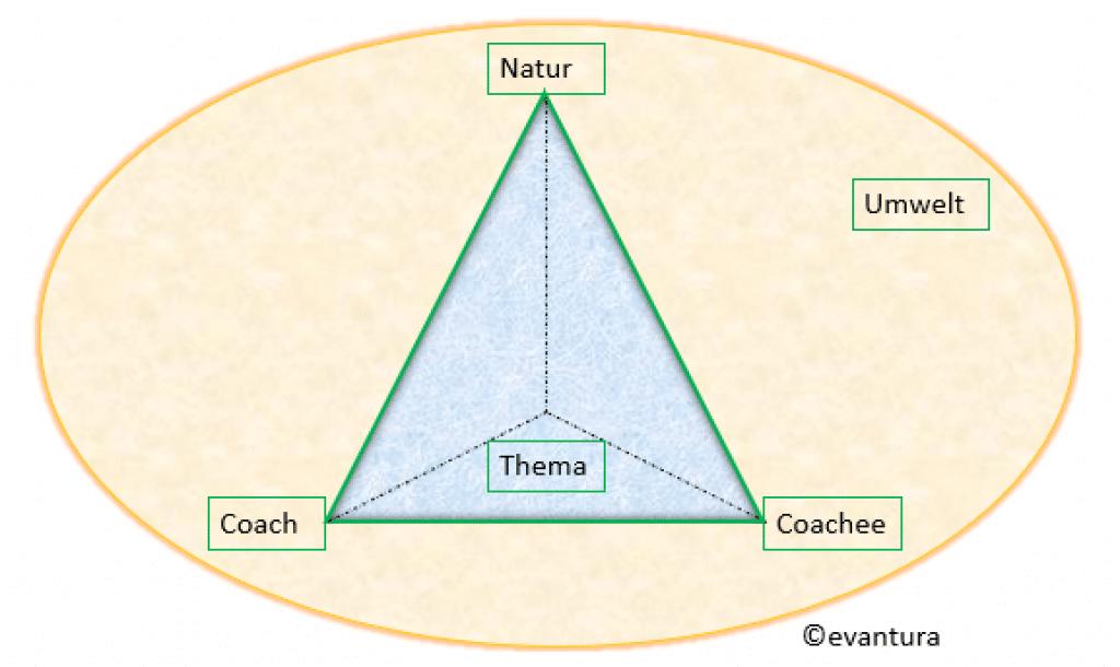 Pyramide der 5 Dimensionen beim Natur-Coaching